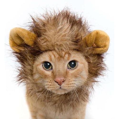 Fluffy Lion Hair Hat For Dogs/Cats
