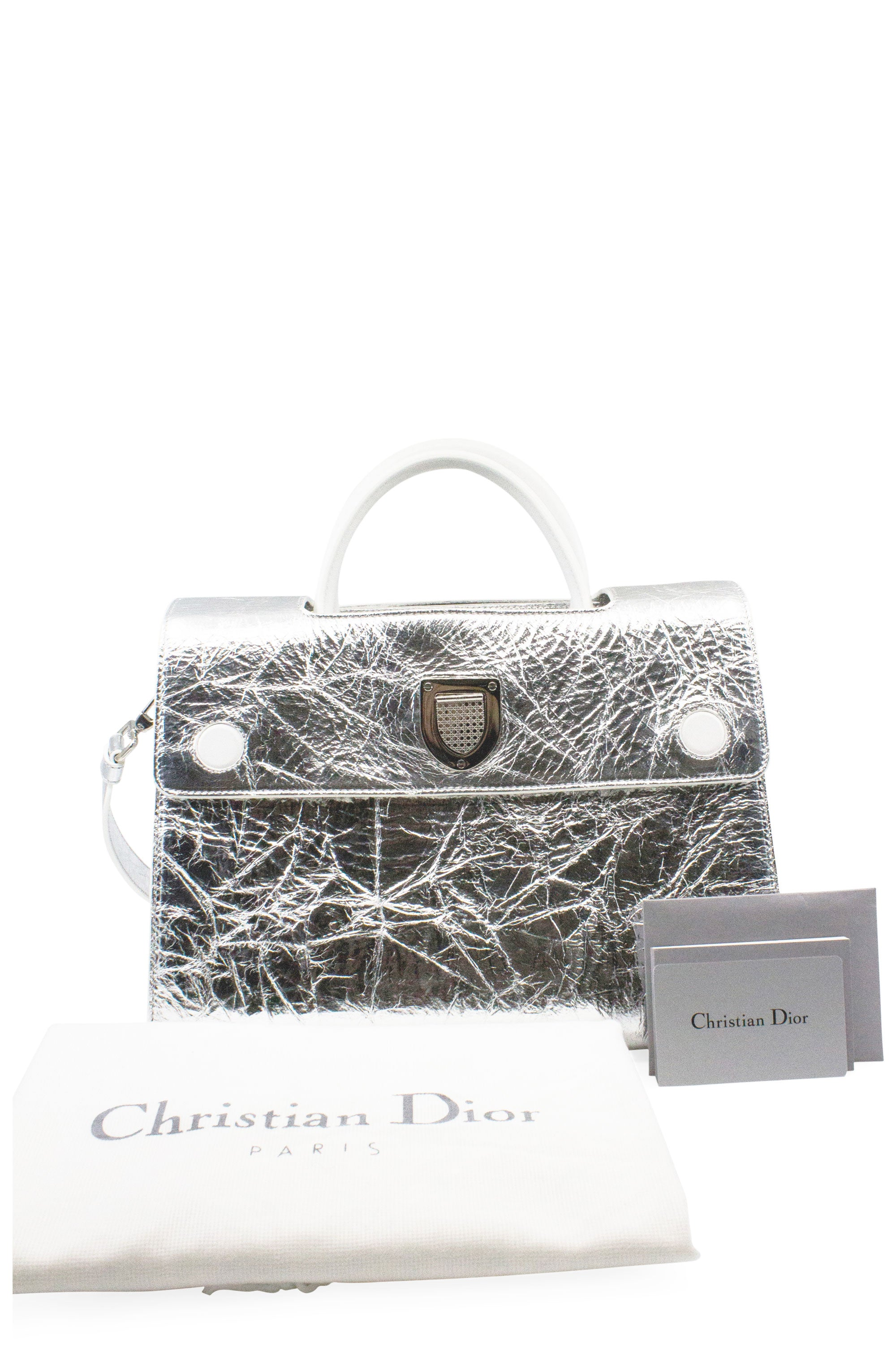 CHRISTIAN DIOR Diorever Metallic Bag