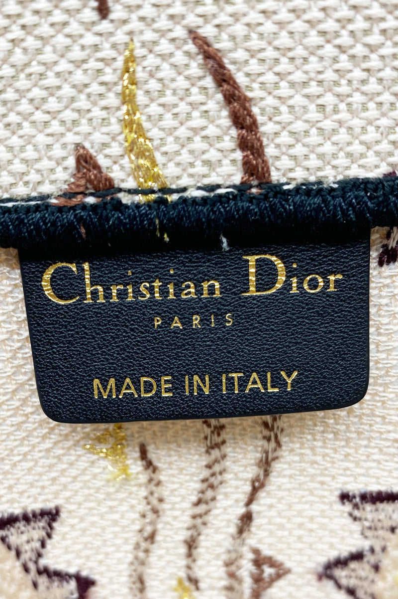 CHRISTIAN DIOR Book Tote Bag Special Edition