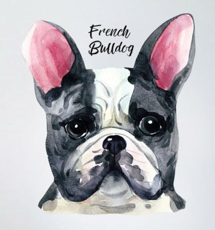 Sticker bouledogue aquarelle