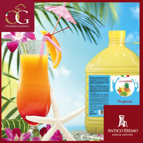 Succo di Frutta in Tanica Concentrato al 70% | Tropical Large - officinegastronomiche