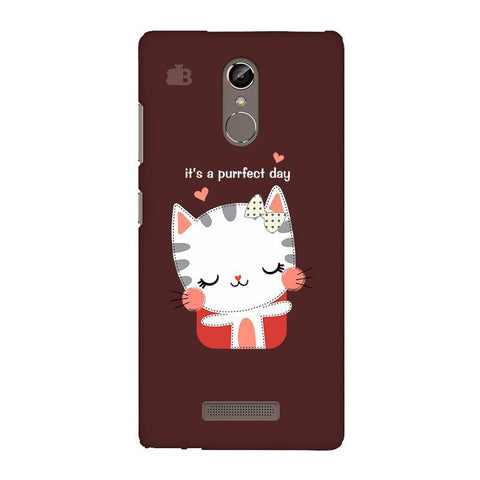 Purrfect Day Gionee S6S Phone Cover