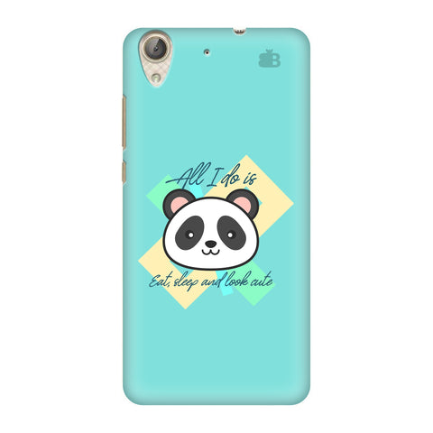 Panda Life Honor Holly 3 Cover