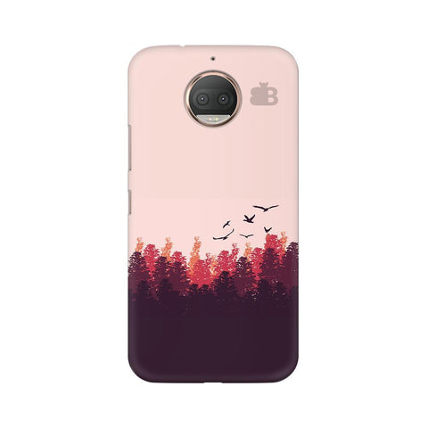 Forest Moto G5s Phone Cover