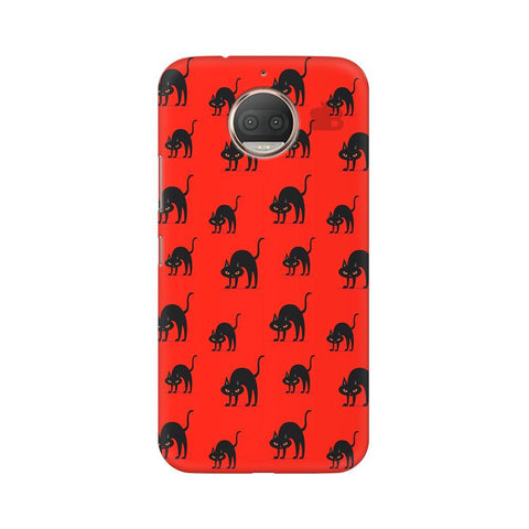 Scary Cats Moto G5s Phone Cover