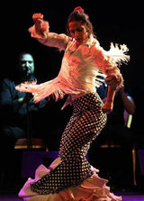 Flamenco Show. Great dancers
