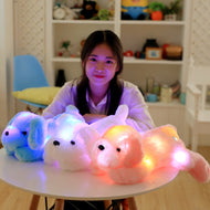 Cuddly, Colorful Glowing Plush Toys