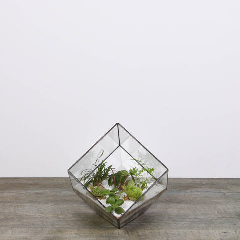 Terrarium square small