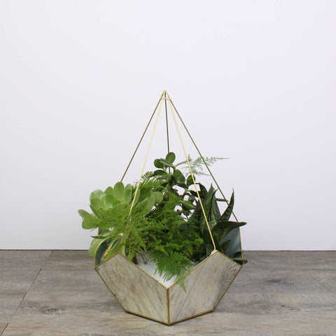 Terrarium mirror drop XL