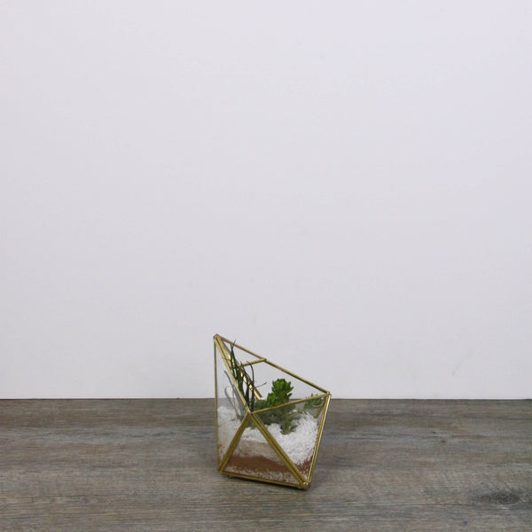 Geometric glass terrarium small