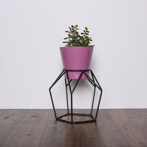 Colorful Wire plant stands - mini T3