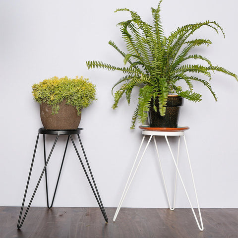 Plant stands - Colorful Wire plant stand for indoor garden
