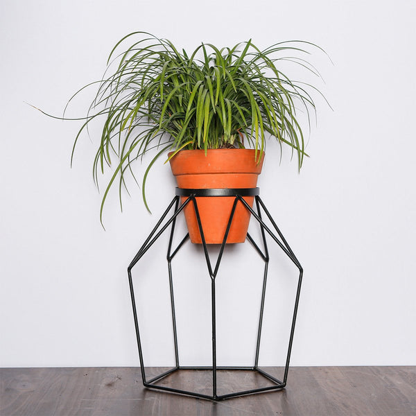 Colorful Wire plant stands - T3