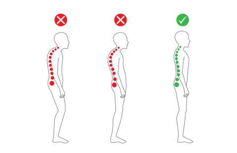 The Natural Posture - What is the correct alignment