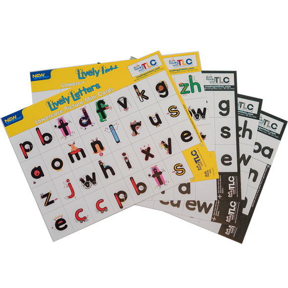 New Generation Lively Letters™ Lowercase Picture and Plain Letter Mini Card Sets