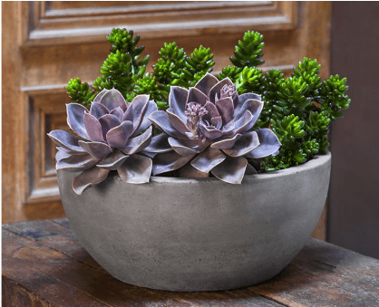 Campania International Geo Bowl Planters Set of 4 At Home with Beth and Chad