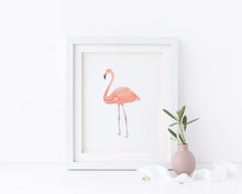 Flamingo Paintings, Flamingo Watercolour Painting, Flamingo Watercolor, Flaming Bird, Flamingo Pictures,