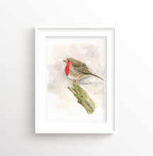 Robin RedBreast Gifts Bird Art Prints, Robin Bird Artwork, Robin Bird Art, Robin Watercolour, Robin Watercolor