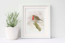 Robin Watercolour Pictures, Robin Watercolour Wall Art, Robin Bird