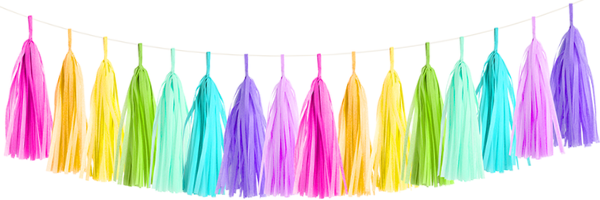 Rainbow Tissue Tassel Garland Kit