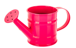 Tabletop Mini Watering Can - Pink
