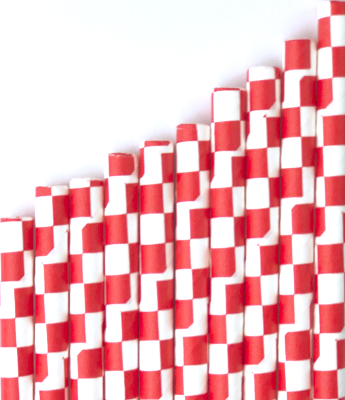 Red Checkered Paper Straws