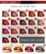 Load image into Gallery viewer, Velvet Passion - Pudaier Waterproof Liquid Lipstick