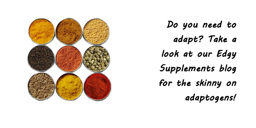 edgywellness Edgy Supplements Blog, adaptogens adrenal fatigue herbs