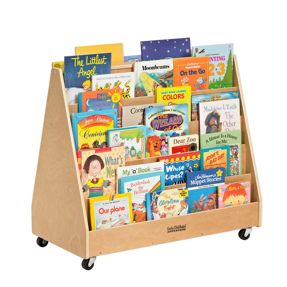 Two sided book display on casters