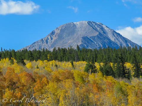 Tall rounded mountain with yellow and orange aspen in front.