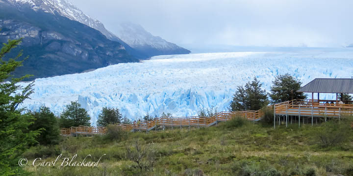 Glacier expanse with visitor walkway