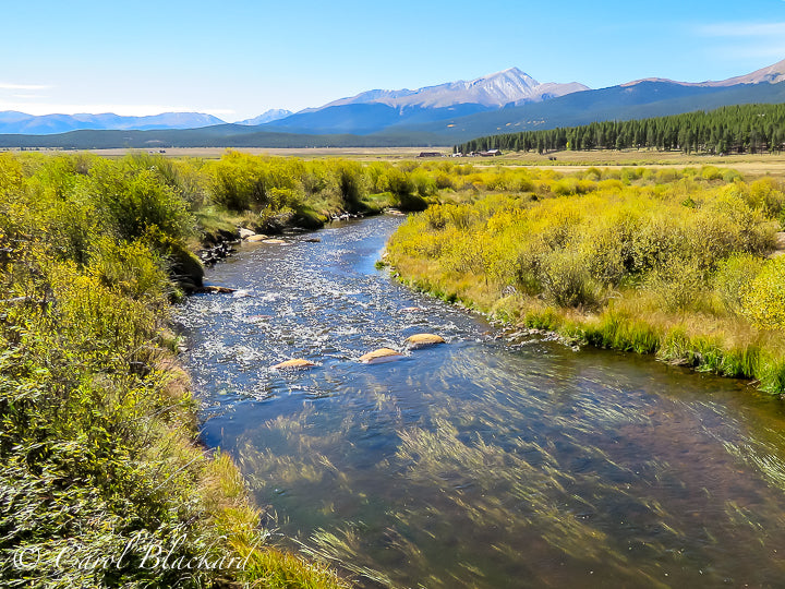 Rushing creek with yellow-green vegetation on banks, mountain range in background