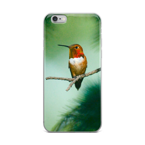 iPhone Case with Rufous Hummingbird