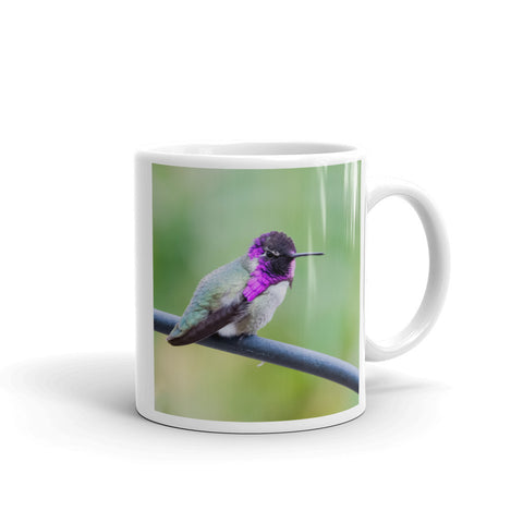 Costa Hummingbird Mug