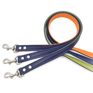 Sapphire Sileather Dog Leash - Hoadin