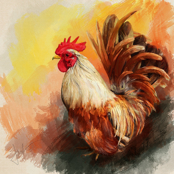 Oil sketch of Rooster by Janice Lawrence
