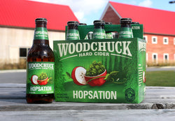 BEER HOPSATION 355ML.