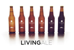 BEER. ARTESANAL DE C.R. 350ML.