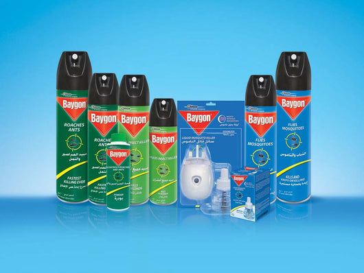 BAYGON HOME Y GARDEN 400ML BASE AGUA