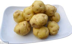 POTATOES KILO