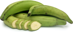 BANANA GREEN UNIT Plaintain