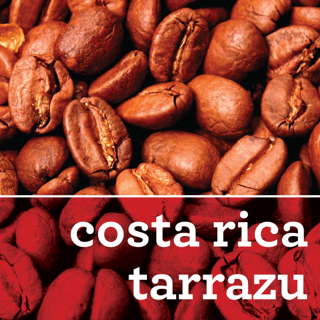 COSTA RICA TARRAZU COFFEE