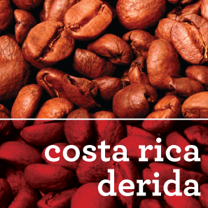COSTA RICA DERIDA COFFEE