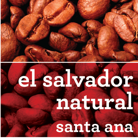 EL SALVADOR NATURAL SANTA ANA COFFEE