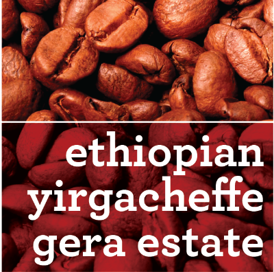 ETHIOPIAN YIRGACHEFFE GERA ESTATE COFFEE