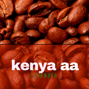 KENYA AA ICHAMARA COFFEE