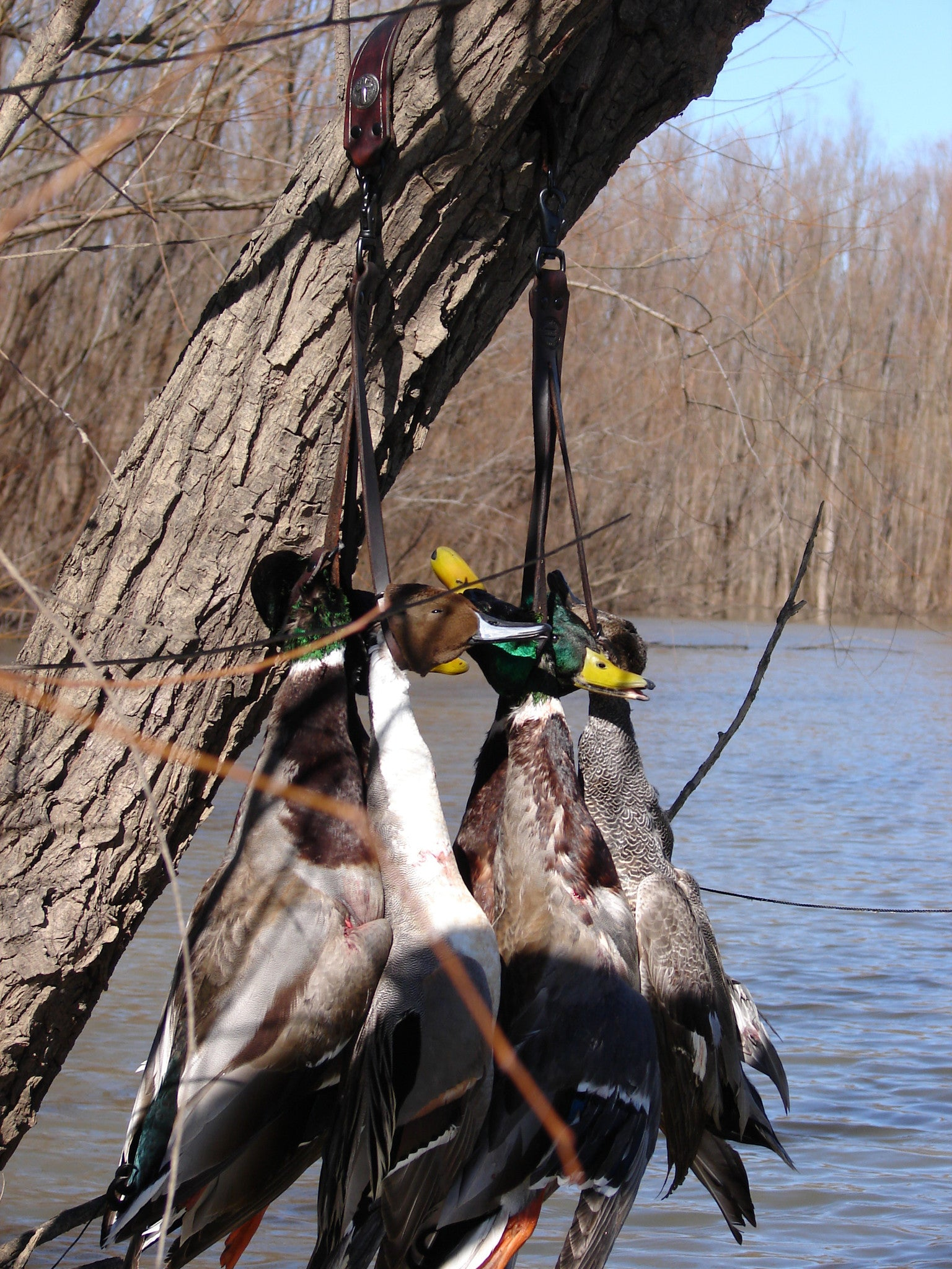 Duck Straps Small Game Carriers Turkey Totes Custom Call Lanyards