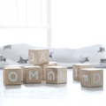 ooh noo alphabet blocks wooden toy