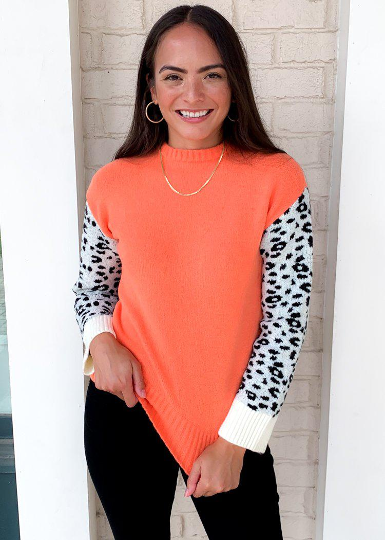 THML Atacama Colorblock Leopard Print Sweater-Hand In Pocket