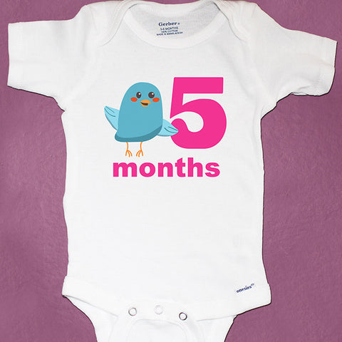 445536ea8 Dinosaur Monthly Baby Onesies, 12 Month Set – Peanut and the Owl